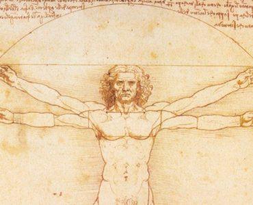 cropped-36519_Leonardo_0020_-_0020_Estudio_0020_del_0020_Hombre.jpg